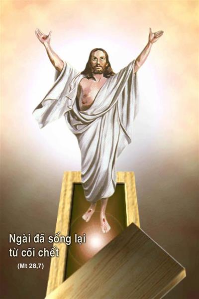 Thân mẫu của cha Đinh Ngọc Lễ, Chính xứ Hà Nội, nguyên Hạt trưởng Xóm Mới, là :