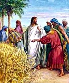 HÀNH ĐỘNG VÌ TÌNH YÊU – LỜI CHÚA Mt 9,32-38