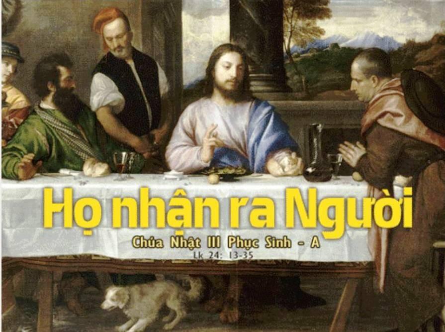 Đón nhận hay khước từ lời Chúa?